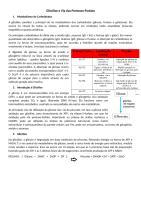 Resumo GLICÓLISE E VIA DAS PENTOSES.docx