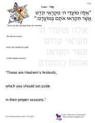 copywork parshas emor.pdf
