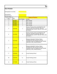 Implementation report.xlsx