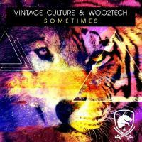Woo2tech Vintage Culture - Sometimes.mp3