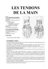 Les tendons.pdf
