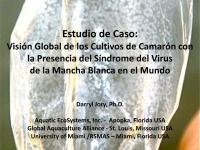 3 Sindrome 111201 WSSV CASE STUDY DJ7.pdf