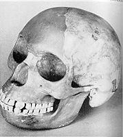 Skull 2 gif